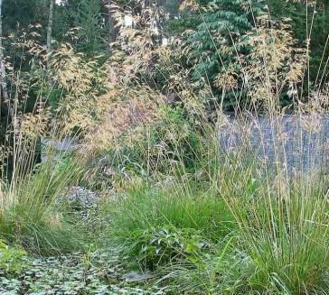 7 tips voor het herinrichten van jouw tuin